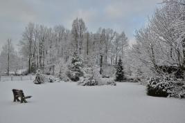 Achtertuin-Vakantiehuis-Polen-Winter